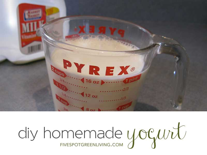 Easy DIY Homemade Yogurt - No special equipment required. I use a heating pad to make mine!