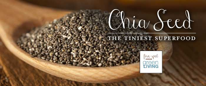 chia seed the tiniest superfood