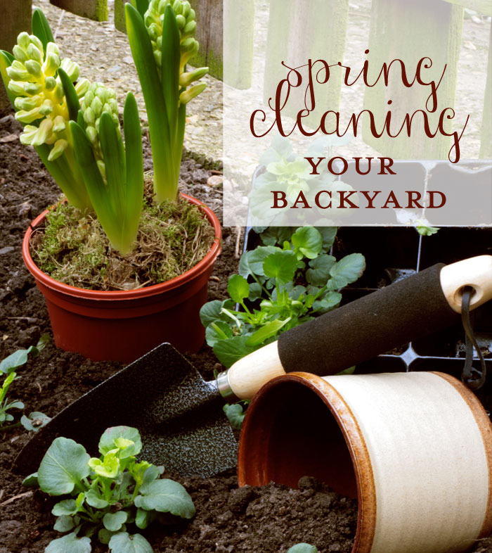 Spring Cleaning Your Backyard