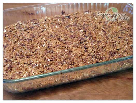 Crunchy Granola Bites Snack Recipe with Omega-3 - Five Spot Green ...