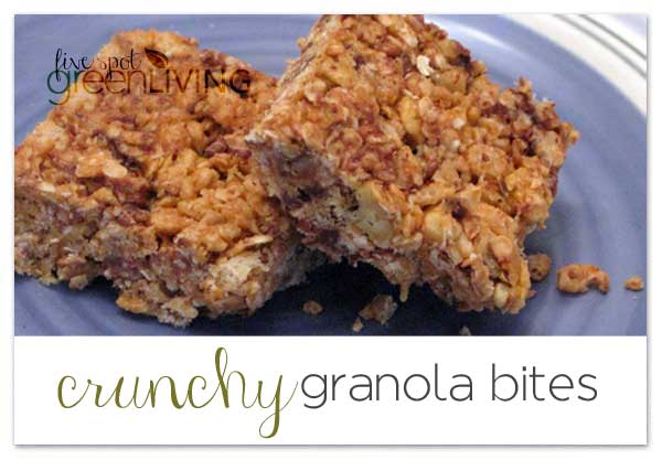 Crunchy Granola Bite Snacks