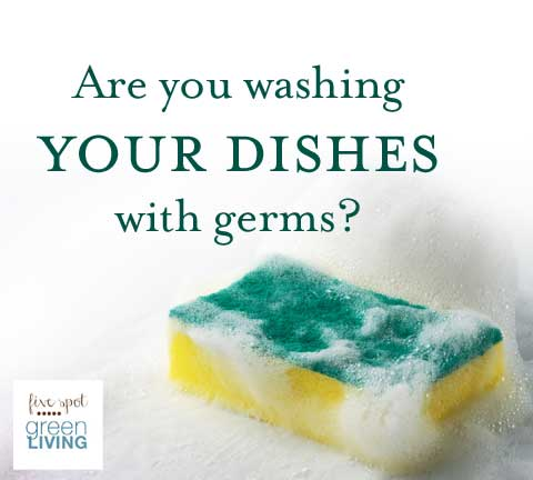 How to Overpower Kitchen Sponge Germs and Microorganisms that Threaten our Health. A kitchen sponge can have more germs than a toilet seat!