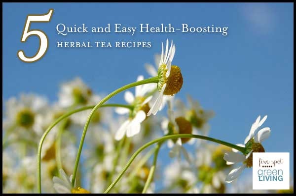 Healthy Herbal Tea Recipes