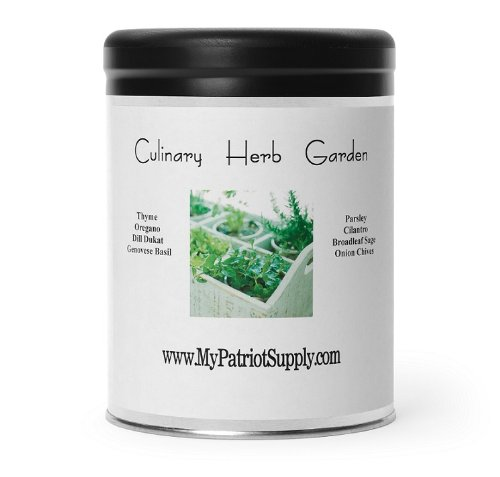 blog-herb-culinary-garden Homemade Mini Greenhouses Using Recycling Containers