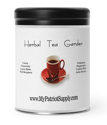 blog-herb-tea-garden Homemade Mini Greenhouses Using Recycling Containers