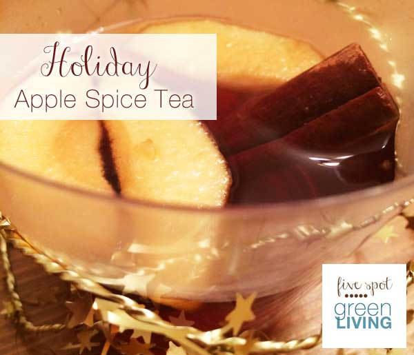 Spiced Tea Recipe with Apple and Cinnamon (Crockpot)