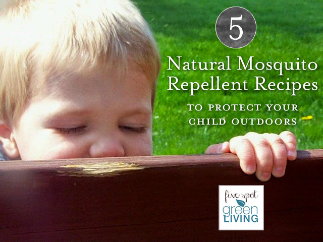 Natural Mosquito Repellent Recipes