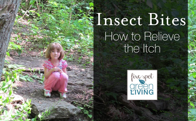 how to take itch out of insect bites