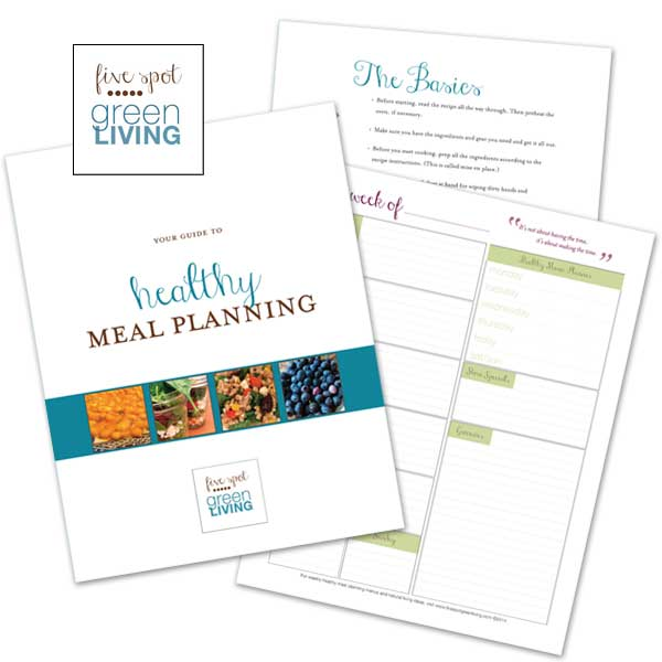 Healthy Meal Planning Guide Free Download Plus Printable - Get the best tips and secrets on healthy meal planning for busy families on a budget!