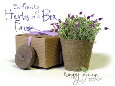 Eco-Friendly Herbs in a Box Favor
