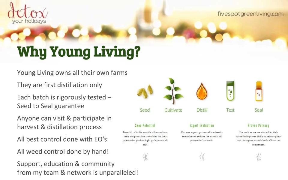 Why Young Living Essential Oils - Detox Your Holidays Homemade Gifts