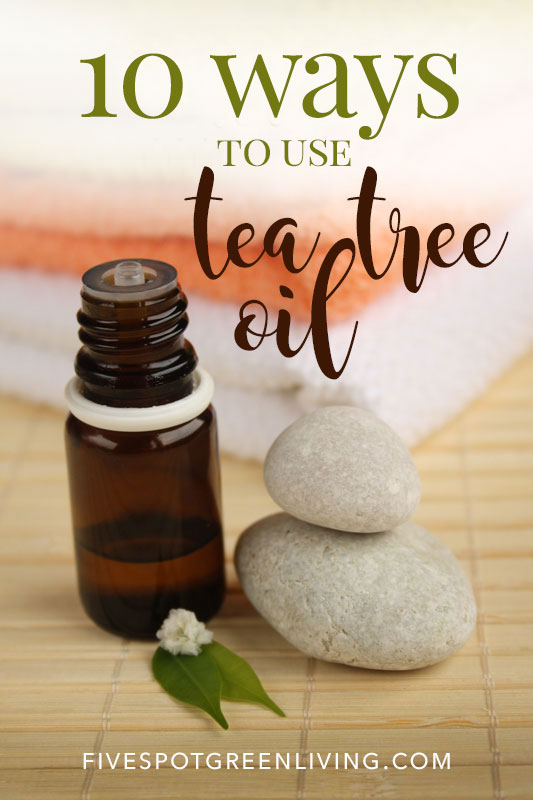 Is tea tree oil good? There are so many tea tree essential oil uses and ways it can help.
