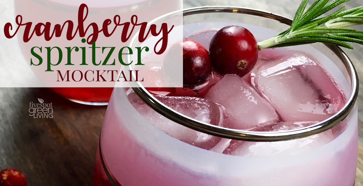 Cinnamon and Cumin-Infused Cranberry Spritzer Mocktail or Cocktail Recipe