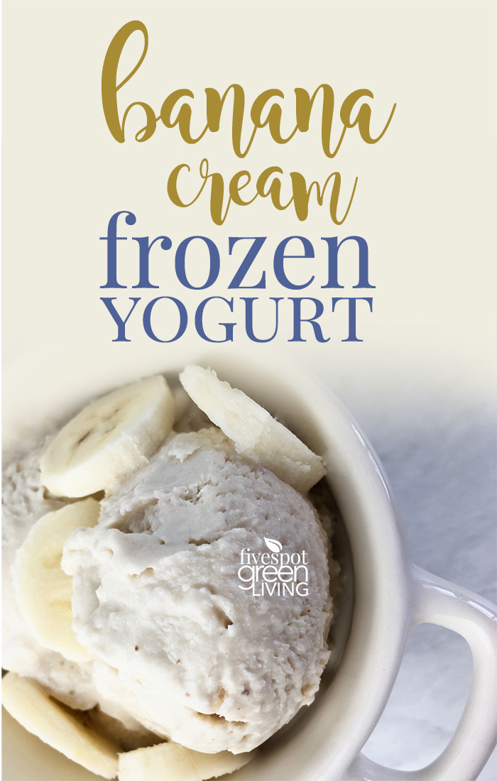 Easy Healthy Banana Cream Frozen Yogurt