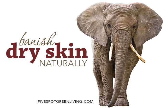 Natural Ways to Banish Itchy, Dry Skin