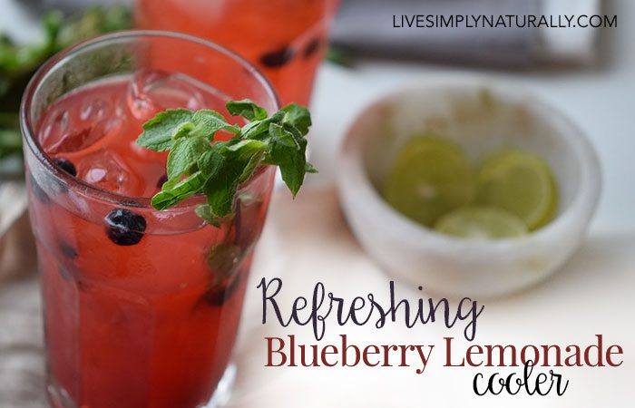 Blueberry Lemonade Cooler