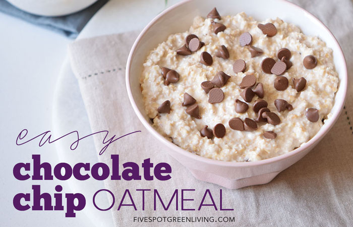 Easy Chocolate Chip Oatmeal Recipe