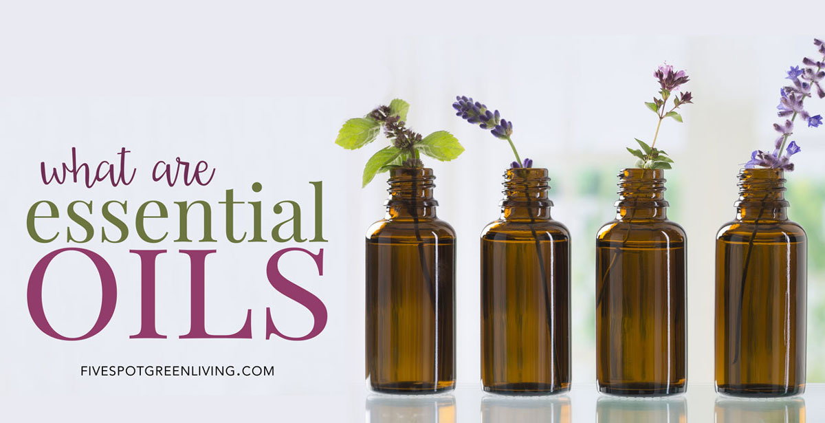 What are the health benefits of essential oils?