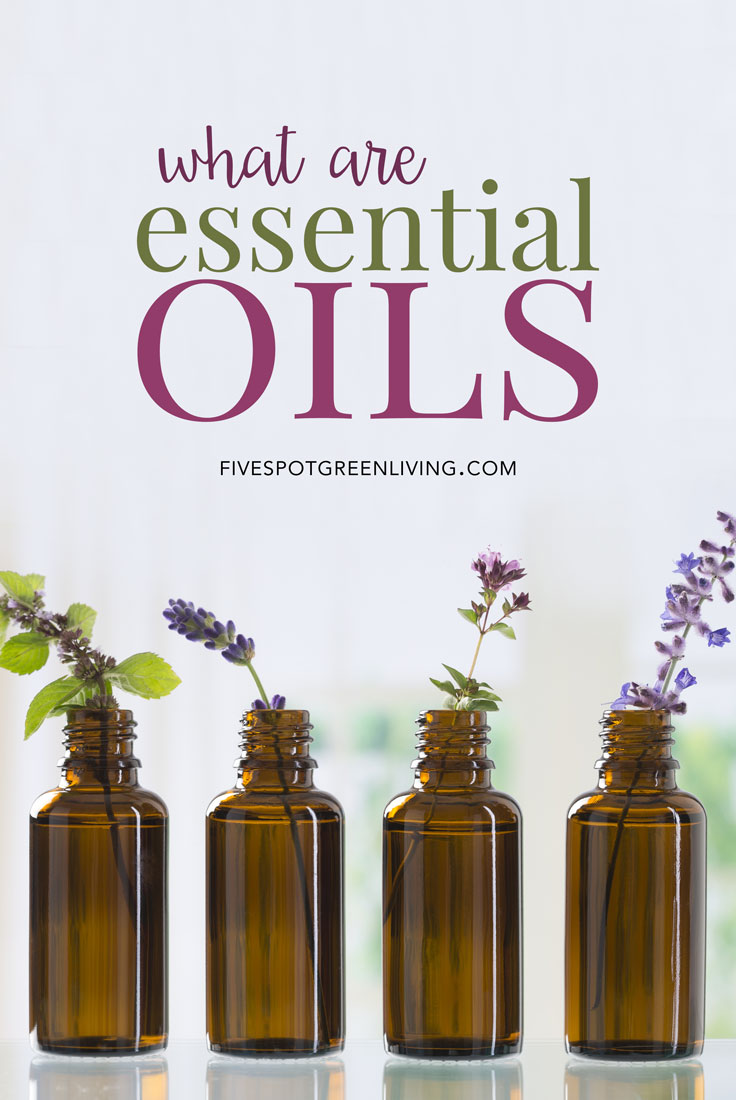 Essential oils are more than just smelling nice - they actually can help you feel better with a variety of ailments as well as household annoyances.