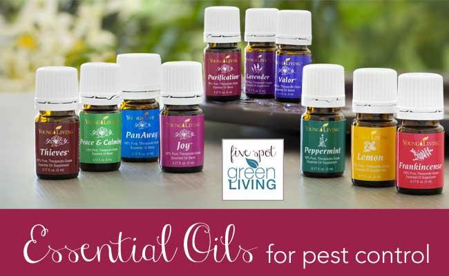 Essential Oils for Pest Control