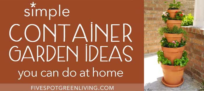 Simple Container Gardening Ideas You Can Do at Home