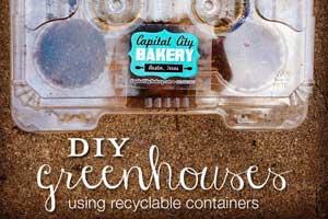 blog-garden-diy-greenhouse-300px Container Gardening