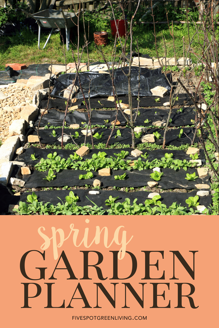 Garden Planner: Spring Planting Guide with worksheet and soil pH testing