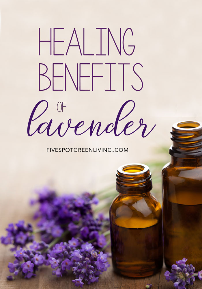 Here are some Healing Benefits of Lavender including recipes and tips!