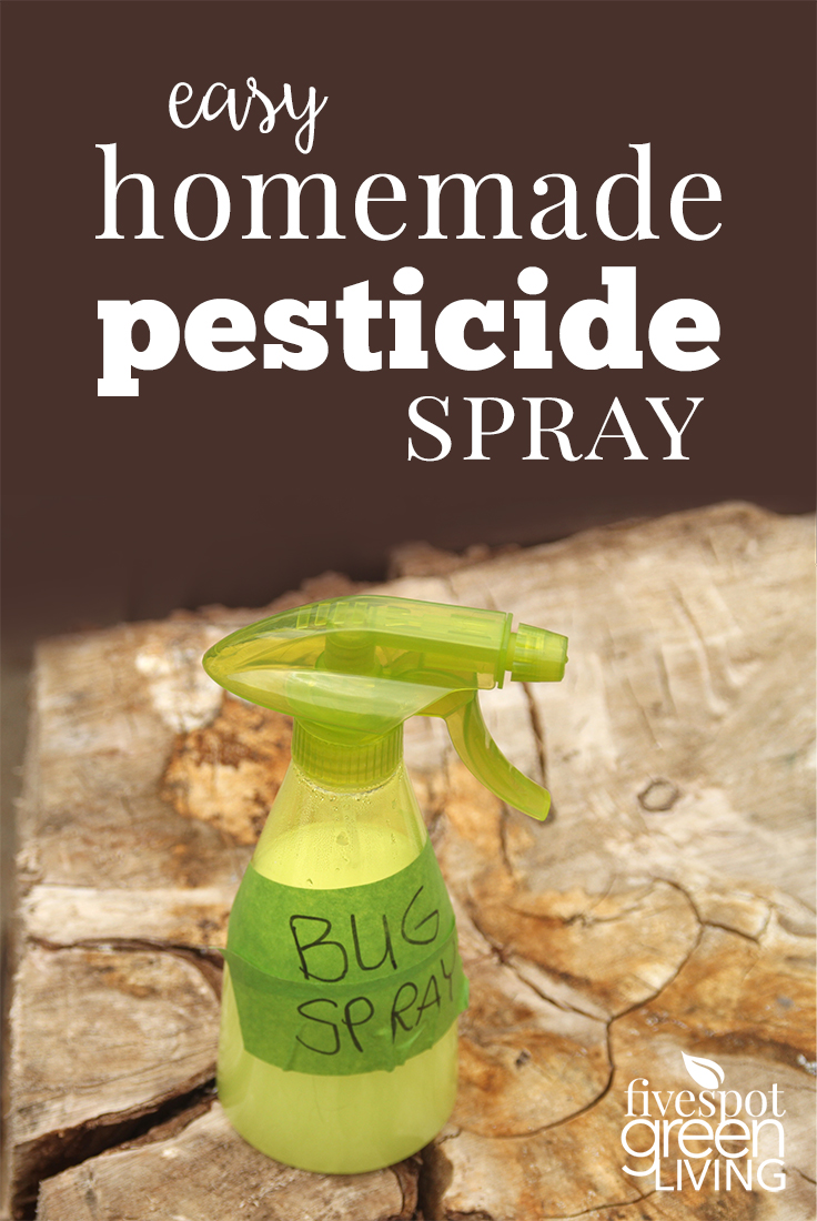 Own Homemade Insecticide Spray