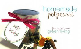 Homemade Holiday Potpourri Recipes - DIY Homemade Christmas Gift Ideas, Printables and Activities