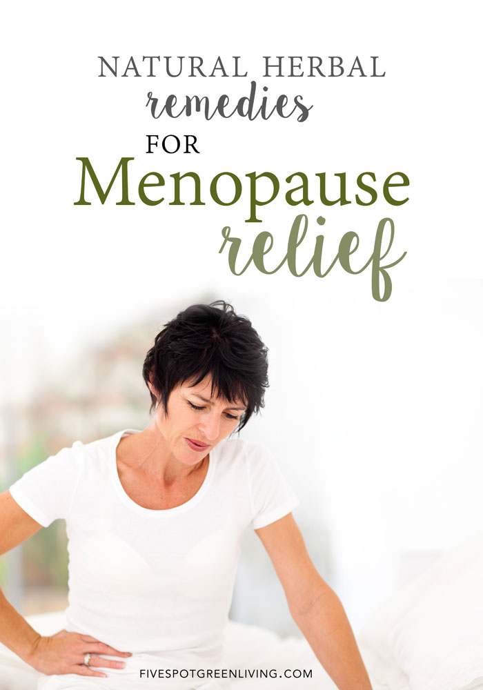 7 Natural Herbal Remedies for Menopause Relief