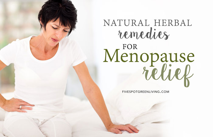 Herbal Medicine for Menopause