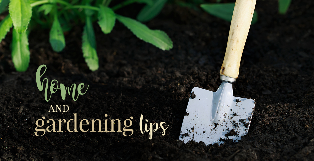Home and Gardening Tips