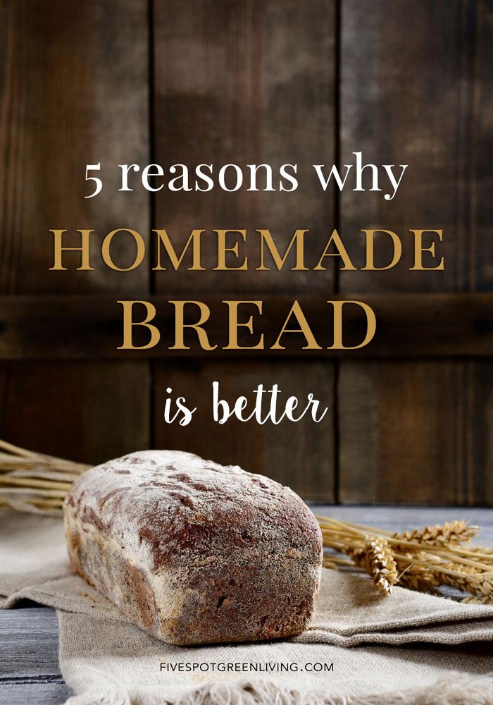 Is Homemade Bread Better? 5 Reasons Why It Is