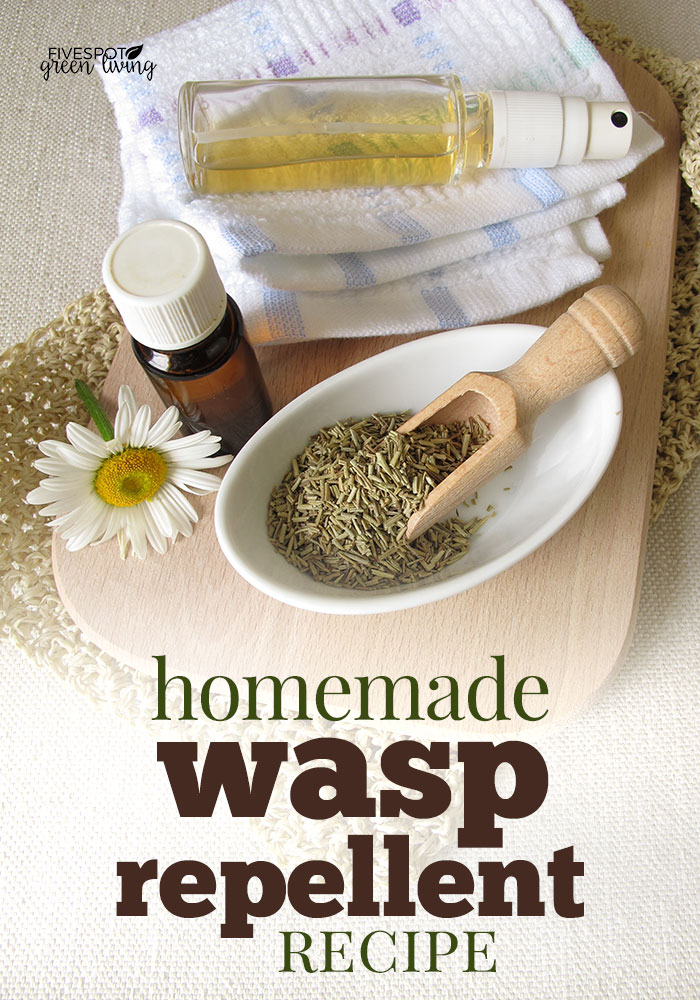 Homemade Wasp Repellent Recipe