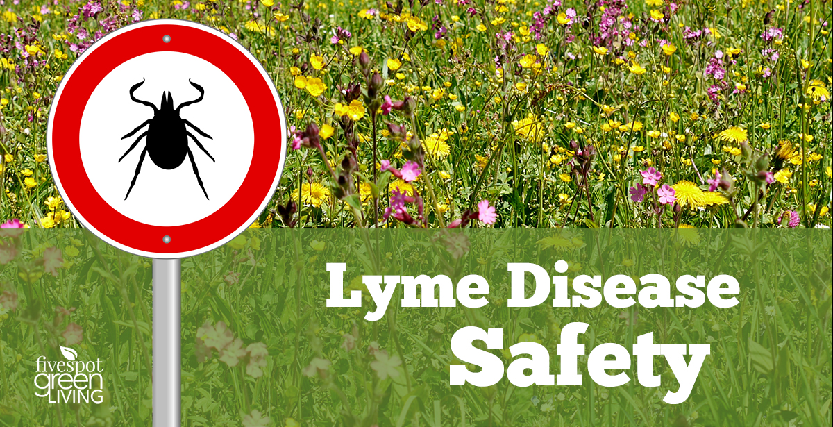 Lyme Disease Safety