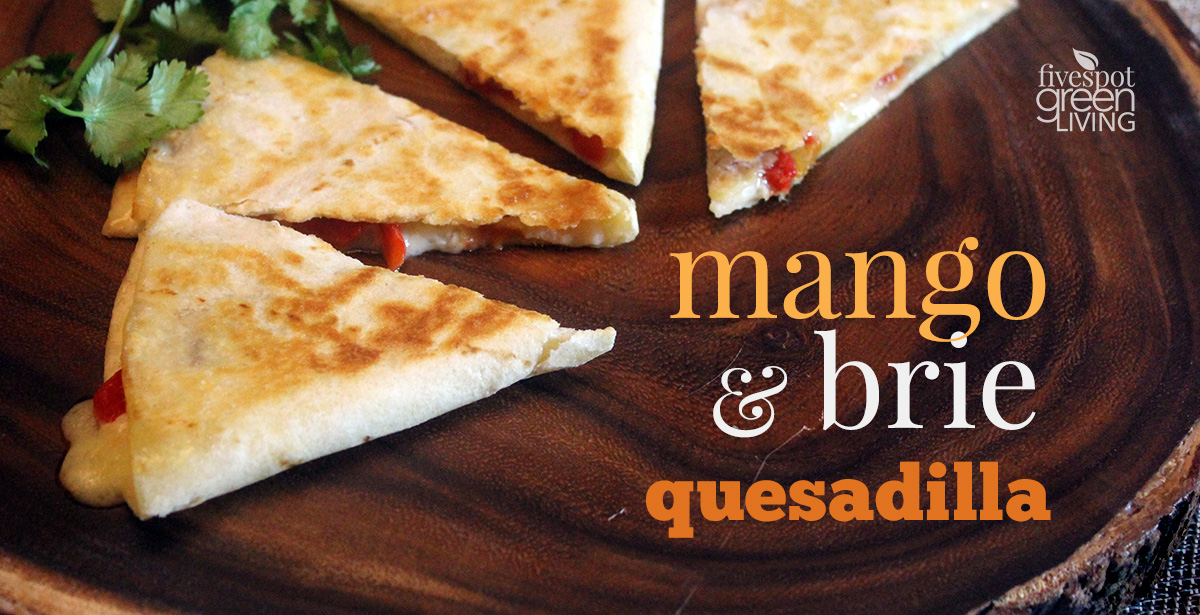 Roasted Red Pepper, Mango and Brie Quesadilla Healthy Appetizer