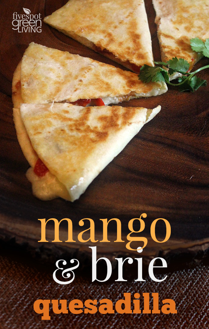 Roasted Red Pepper, Mango and Brie Quesadilla Healthy Appetizer is so easy and quick!