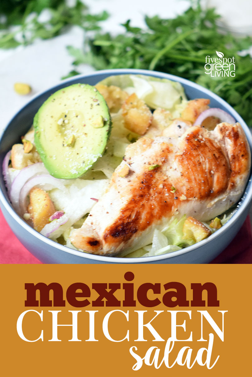 Healthy Mexican Chicken Salad Recipe