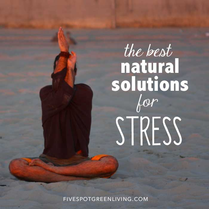 The Best Essential Oils for Anxiety and Stress