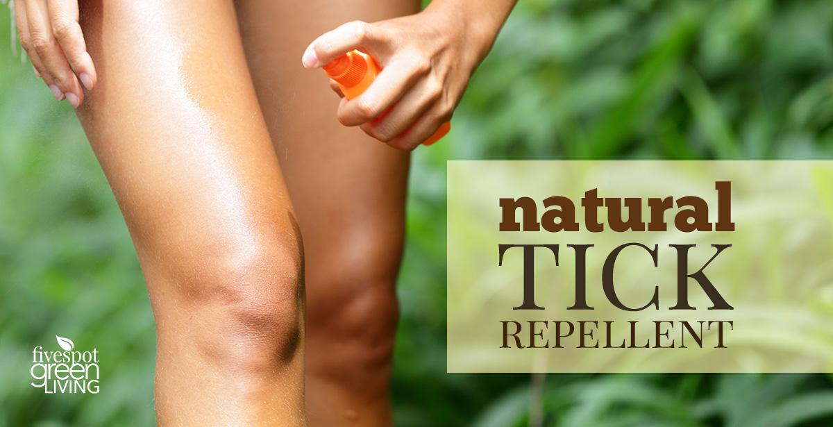 Natural Tick Repellent Using Tea Tree Oil