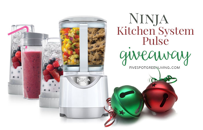 Ninja Kitchen System Pulse Giveaway