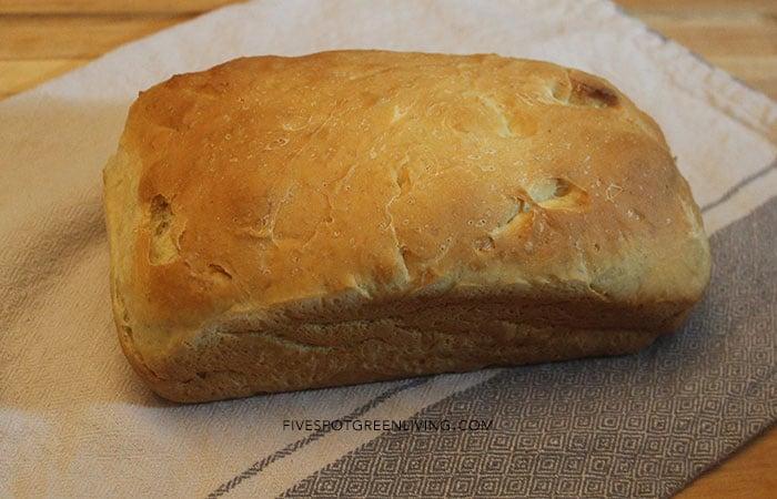 Homemade No Knead Bread Recipe for kids