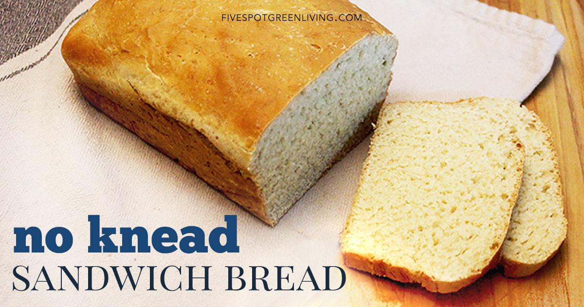 Easy No Knead Homemade Bread