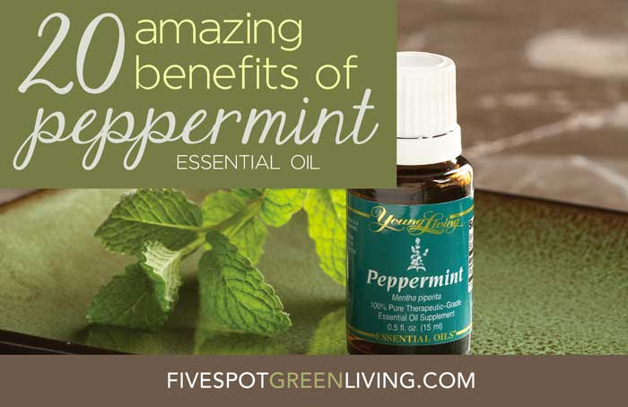 20 uses of peppermint oil