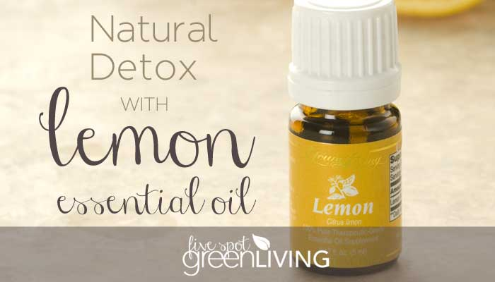 Easy Natural Detox with Lemon Essential Oil. Brighten your skin, get rid of headaches, indigestion and bloating by cleansing your liver! FiveSpotGreenLiving.com