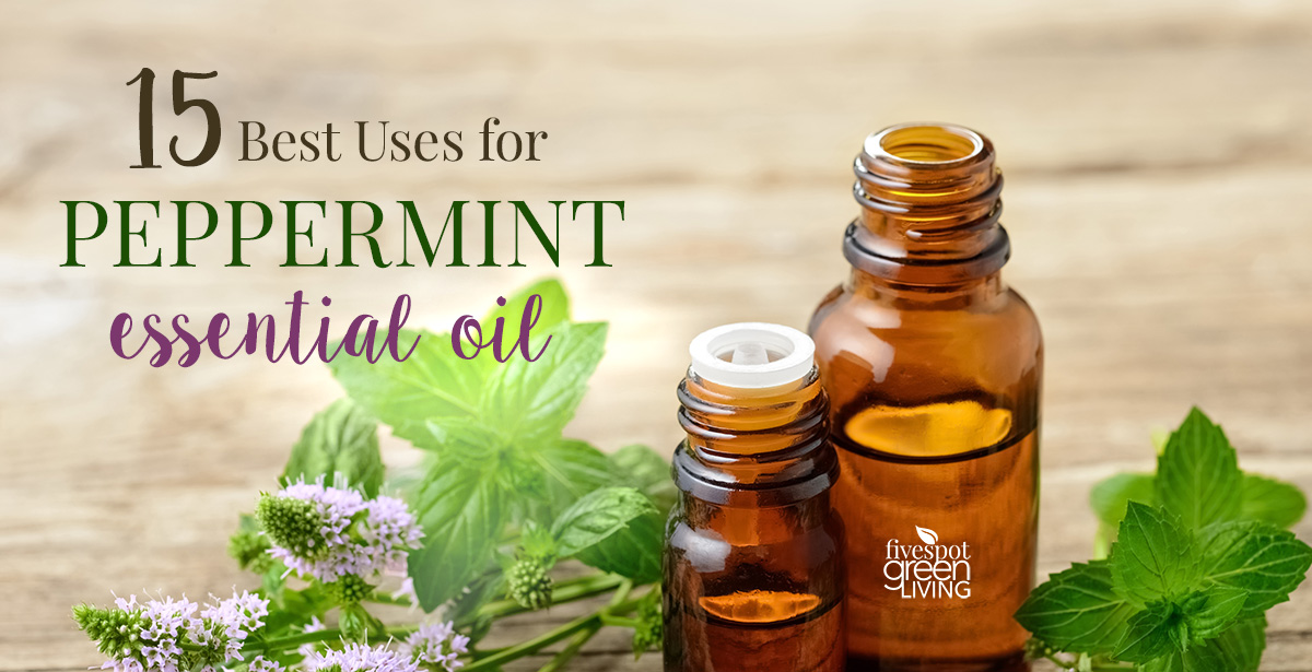 15 Best Uses for Peppermint Essential Oil