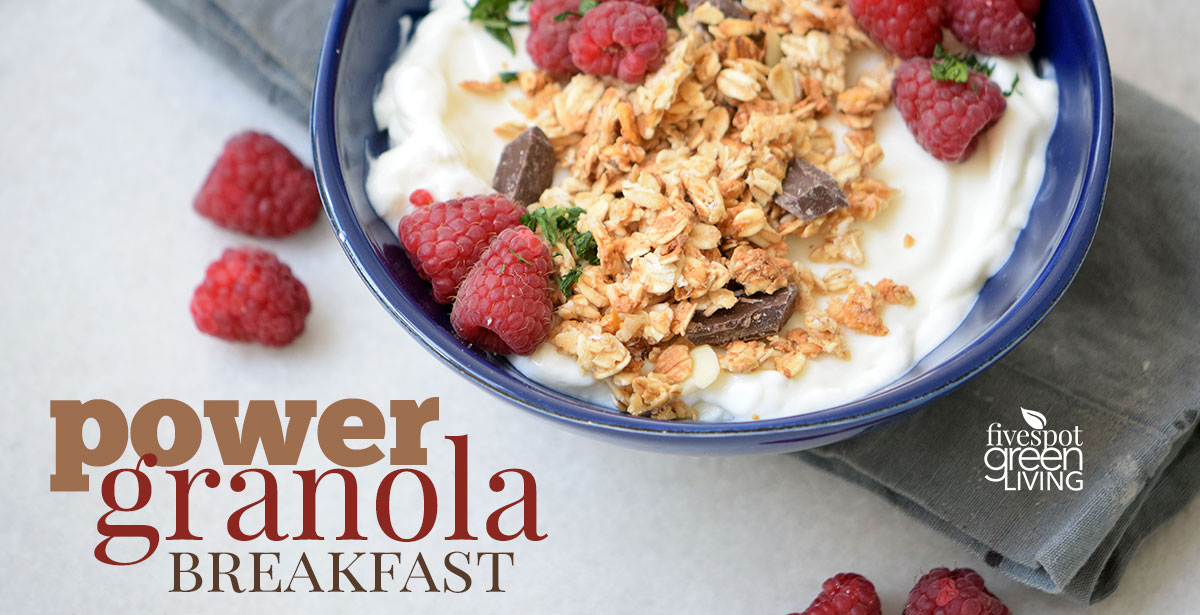 Power Granola Breakfast Recipe with Healthy Yogurt