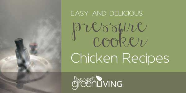 Easy and Delicious Pressure Cooker Recipes- chicken curry