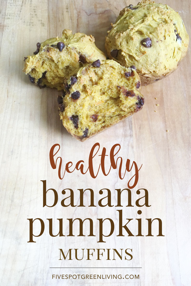 This easy and healthy pumpkin muffins recipe whips together so fast and it makes a ton of muffins.